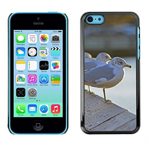 Premio Sottile Slim Cassa Custodia Case Cover Shell // F00029760 Sleepy mouettes // Apple iPhone 5C