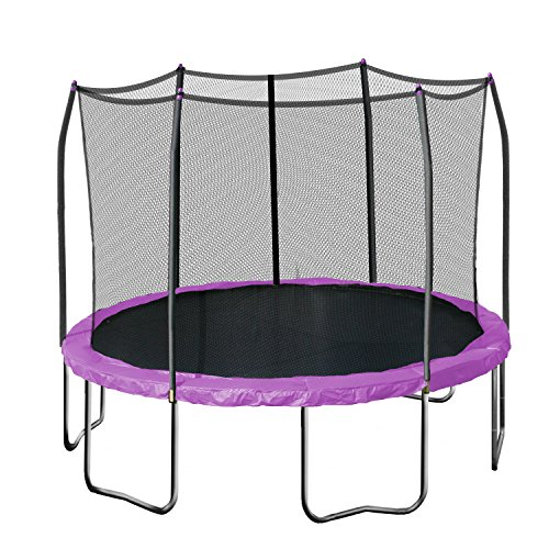 Skywalker Trampolines Round Trampoline with Enclosure,...