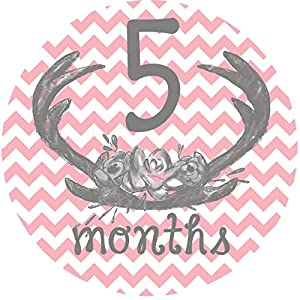 12 Monthly Baby Stickers, Deer Antlers, Flowers, Baby Girl, Baby Belly Stickers, Baby Month Stickers, First Year Stickers Months 1-12, Pink, Grey, Gray, Chevron, Deer Antlers, Girl 7