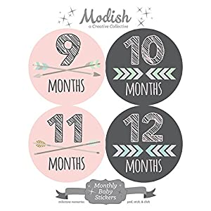 12 Monthly Baby Stickers, Pink, Gray, Tribal, Arrows, Chevron, Baby Month Stickers Girl, Baby Book Keepsake, Baby Shower Gift 8