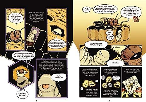 The Way of the Hive: A Honey Bee's Story: Hosler, Jay, Hosler, Jay:  9780063007352: Amazon.com: Books