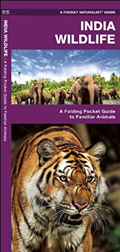 India Wildlife: A Folding Pocket Guide to Familiar Animals (Pocket Naturalist Guide Series)