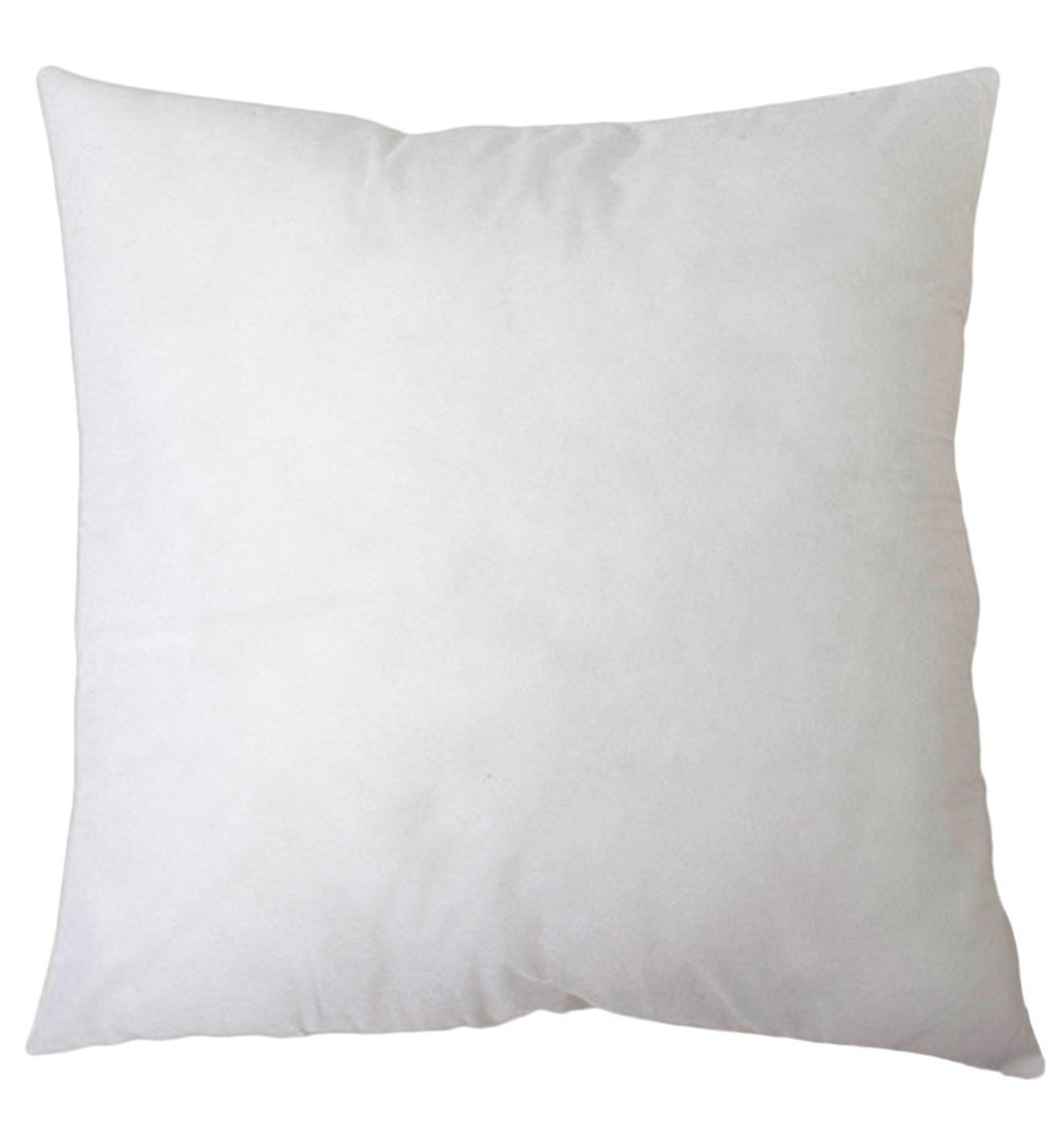 "Amazon.com: DreamHome Square Poly Pillow Insert, 20"" L X 20"" W ..."