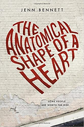 Image result for the anatomical shape of a heart