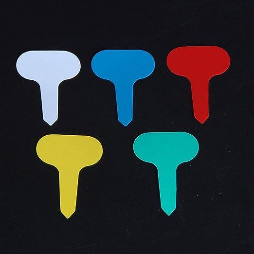 T-Tipo 100 Piezas de plástico de jardín Etiquetas Adornos Flor de la Planta Etiqueta Nursery Gruesos marcadores de Etiquetas para Plantas de jardín Decoración: Amazon.es: Jardín
