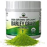 Organic Barley Grass Juice Powder by Peak Performance. USA Grown Vegan Superfood Supplement Rich in Fiber, Antioxidants, Chlorophyll. Non Irradiated, Non GMO, Gluten Free Barleygrass Extract Powders