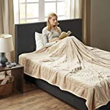 Woolrich Ultra Soft Knitted Plush Reverse to Sherpa Auto Shut Off Electric Blanket with Two 20 Heat Level Setting Controllers, King: 100x90', Tan