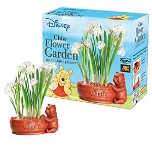 Chia Winnie The Pooh Flower Garden Planter (Discontinued by Manufacturer)