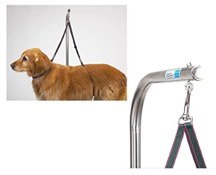 Amazon.com : Nylon Grooming Table Harness For Dogs 27 Inches ...