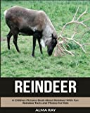Reindeer: A Children Pictures Book About Reindeer With Fun Reindeer Facts and Photos For Kids