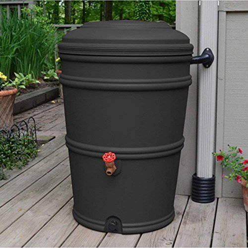 - Rain Barrel Rain Station