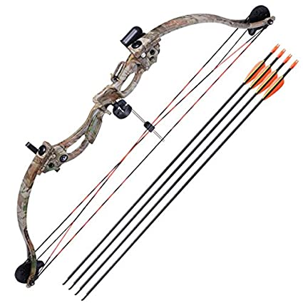 Image result for Composite Bow