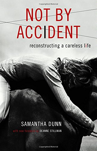 Download Not by Accident PDF