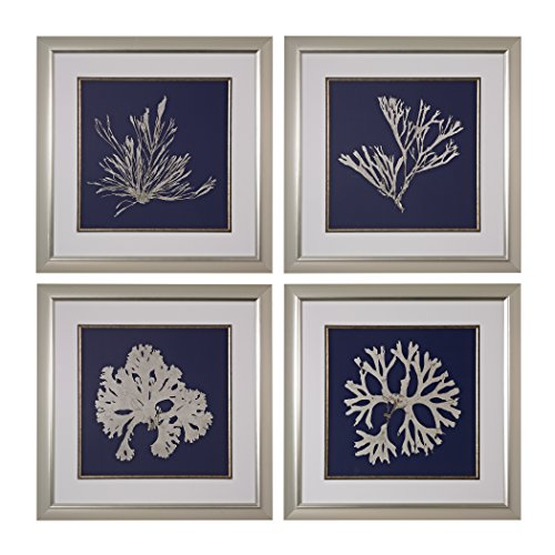 Sterling Seaweed on Navy I, II, III, IV Fine Art Giclee Under Glass, Set of - Art Sterling