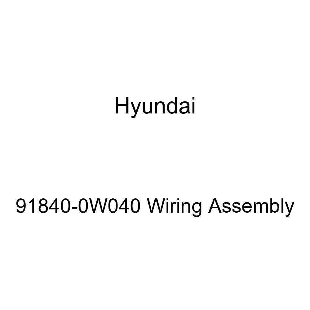 Genuine Hyundai 91840-0W040 Wiring Assembly