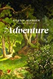The Adventure (The MIT Press)