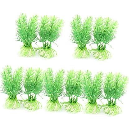 Amazon.com : eDealMax cerámica Base de plástico planta de acuario pecera agua de la hierba Verde 10pcs : Pet Supplies