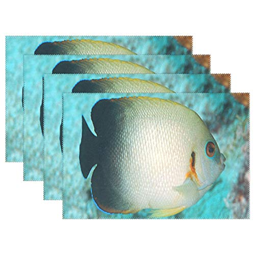 NMCEO Place Mats Pearlscale Angelfish Personalized Table Mats for Kitchen Dinner Table Washable PVC Non-Slip Insulation Set of 4