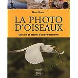 La photo d'oiseaux: Conseils et astuces d'un professionnel