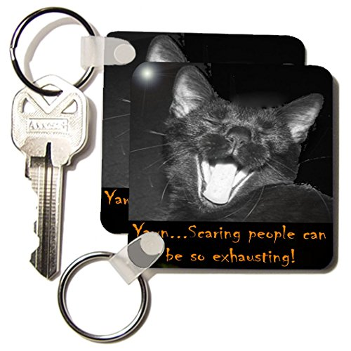 3dRose B and W Halloween Black Cat Yawning - Key Chains, 2.25 x 4.5 inches, set of 2 (kc_6030_1)