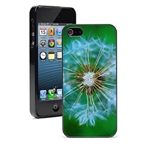 Apple iPhone 4 4S 4G Black 4B349 Hard Back Case Cover Color Close Up of Dandelion