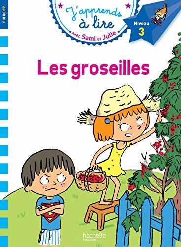 Sami Et Julie Cp Niveau 3 Les Groseilles J'Apprends Avec Sami Et Julie French Edition