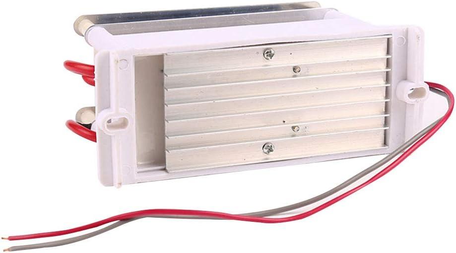 Generador de ozono port/átil doble integrado de cer/ámica para AC220V10GC