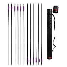 IRQ 31 inch Hunter Colored Fletched Carbon Arrows for Recurve and Compound Bow Replaceable Arrow Tips for Hunting +Black Arrow Quiver Back 12 Pack