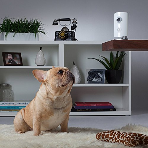 Piper nv Security Camera with Door/Window Sensor and Smart Switch, All-in-One Security System with Video Monitoring Camera, White
