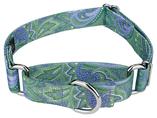 Designer Collar Swirls Dog (Country Brook Design Green Paisley Martingale Dog Collar-M)