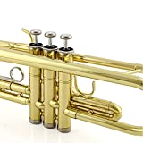 TRUMPET - Apelila Bb Key Brass Gold Lacquer with