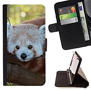 DEVIL CASE - FOR Samsung Galaxy S6 - Little Red Panda Bear Face Tree Tail Animal - Style PU Leather Case Wallet Flip Stand Flap Closure Cover