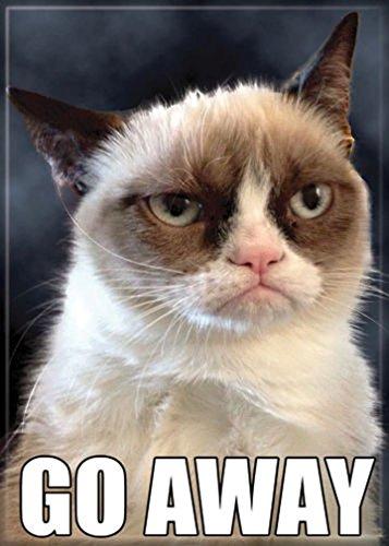 Ata-Boy Grumpy Cat 'Go Away' 2.5