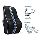PROMIC Memory Foam Lumbar Support Back Cushion, Ergonomic Lumbar Pillow Relieves Sciatica Pain - 3D Ventilative Mesh Lumbar Support Pillow for Office Desk Chair Car Seat Couch and Sofa (Black)