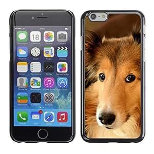 Be Good Phone Accessory // Dura Cáscara cubierta Protectora Caso Carcasa Funda de Protección para Apple Iphone 6 Plus 5.5 // Collie Shetland Sheepdog Canaan Dog