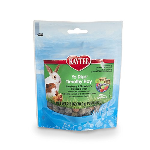 (Kaytee Fiesta Blueberry and Strawberry Flavor Yogurt Dipped Timothy Hay for Small Animals, 2.5-oz bag)
