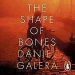 The Shape of Bones | Daniel Galera
