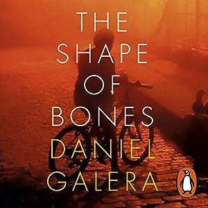 The Shape of Bones Audiobook