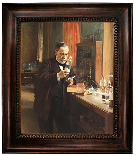 Historic Art Gallery Portrait of Louis Pasteur in His Laboratory 1885 Framed Canvas Print 20