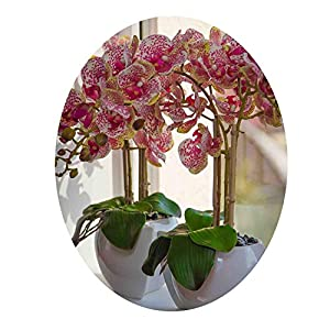 Miao Express Phalaenopsis Orchid 90cm (7 Flower/stem) Silk Real Touch Artificial Flower Wedding Party Flower Floral 14