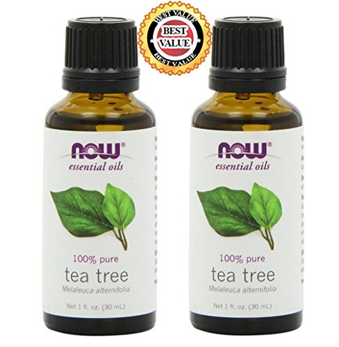 NATURAL Organic Aromatherapy Pure Therapeutic Grade NOW Foods Essential Oils Set. 2-pack of Peppermint. BEST for Balance, Healing, Relieve, Sleep, Weight Loss, Cooking, Purify Blends, Diffuser, Stress & Massage. Best, Great Gift Ideas! (Tea Tree) (Now Foods Wintergreen Oil compare prices)