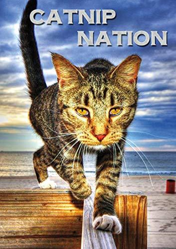 Catnip Nation