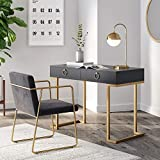 Nathan James 53302 Leighton Two-Drawer Home Office Computer Desk Vanity Table, Wood and Metal, Black/Gold
