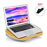 Laptop Lap Desk, Portable Computer Lap Desk with Built-in Cushions as Book Tray/Sleeping Pillow/Knee
