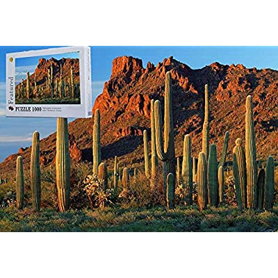 Arizona Desert Cactus 1000 Pieces Wooden Challenge Jigsaw Puzzles Difficult Photography Puzzles for Adult: Toys & Games