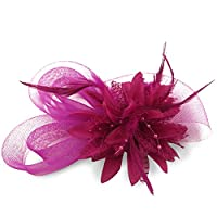 HSRT Women Brides Wedding Party Gauze Fascinator Headwear Headband (Rose Red)