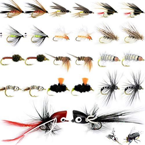 (Fly Fishing Kit-Pack 3/5/9/12/26 of Handmade Fly Fishing Lures Kit-3D Laser Compound Eyes-Food-Grade Silicone Body Flies-Eco-Friendly Packaging-High Simulation Fly Fishing Dry Flies (Dry Lure))