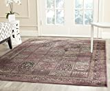 Safavieh Vintage Premium Collection VTG127-880 Purple Transitional Oriental and Fuchsia Distressed Silky Viscose Area Rug (5'3″ x 7'6″) Review
