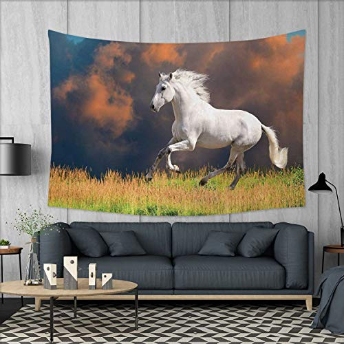 ons for Living Room Bedroom Andalusian Horse with a Majestic Dust Cloud Background Strong Desires Photo Wall Tapestry W80 x L60 (inch) White Orange Green ()