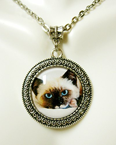 Ragamuffin cat pendant and chain - CAP05-170 (Ragamuffin Cats)